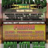 Dancehall Madness vol. 12